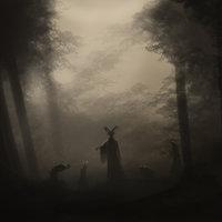 Voces en el bosque