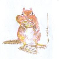 ardilla en lapices de colores