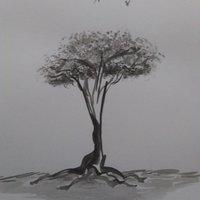 Viejo árbol