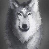 Lobo lunar (Comision)