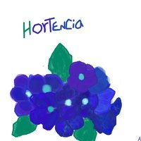 Hortencia
