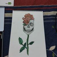 Primeros dibujos con lapices acuarelables.