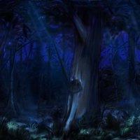 fondo de bosque