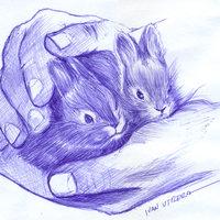 conejos a lapicero