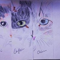 marcapáginas especial los gatos de WineXD y Maestro ciego parte 3: Odin