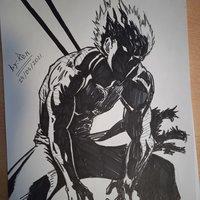 Garou, One Punch Man