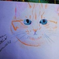 Wilson el gato de RubiusOmg