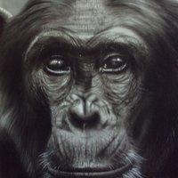 Mono, así de simple!!!