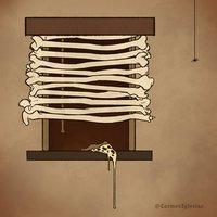 Día 5: Huesos