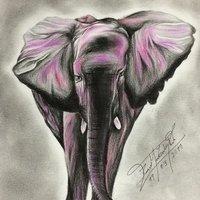 Dibujo a lápiz y color,  Elefante.