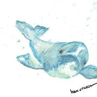 delfin en acuarela