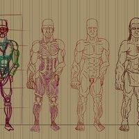 Ensayo Anatómico Prehistóricos