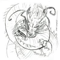 dragon vs tigre