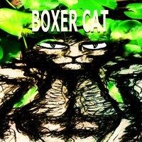 NENÚFAR-BOXER CAT