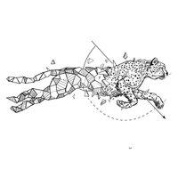 Diseños de animales geométricos