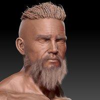 Vikingo estudio de rostro