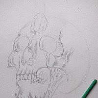 Skull in process