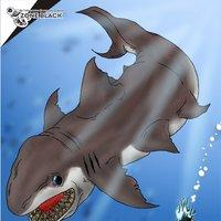 Tiburón en Pozo
