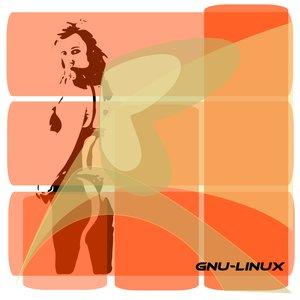 Woman_GNU_Linux_3746.png