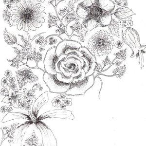 floress_4262.JPG