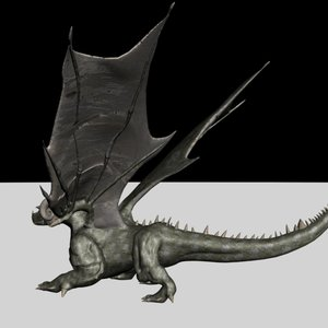 Dragon4_4784.jpg