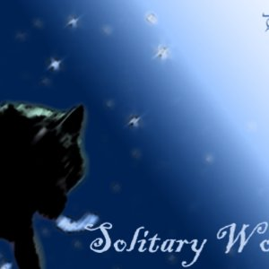 Solitary_wolf_5255.png