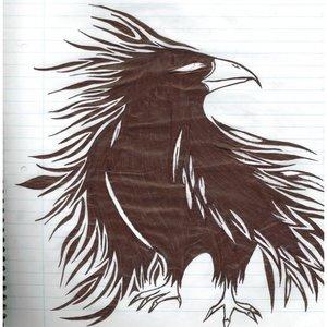 raven_6552.jpg