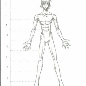 Anatomia_Humana_Proporciones_6608.png