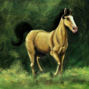 caballo_7815.jpg