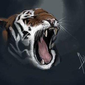 tiger_8589.jpg