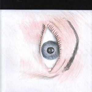 ojo_que_examina_8687.jpg