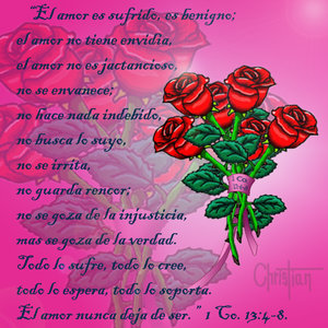 Ramos_rosas_11175.jpg