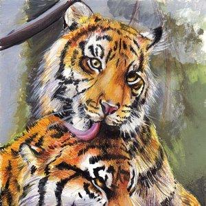 Tigres_13072.jpg