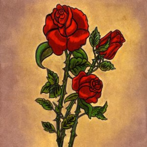 Rosas_Rojas_13449.jpg