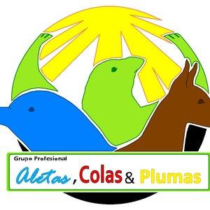 logo_aletascolas_plumas_986.JPG