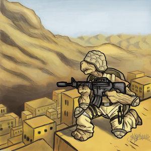 Tortuga_militar_1032.jpg