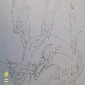 Dragon_1330.JPG