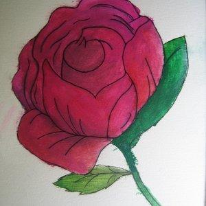 Rose_17180.JPG