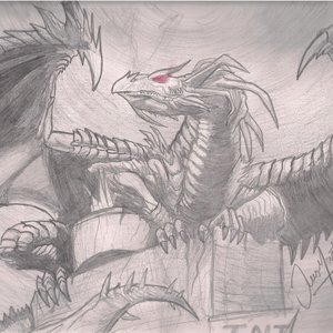 un_dragon_xd_18240.jpg
