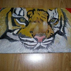 Tigre_19051.jpg