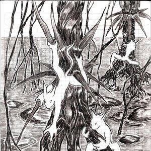 Antroipoides_19300.jpg
