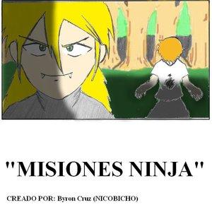 misiones_ninja_20076.JPG