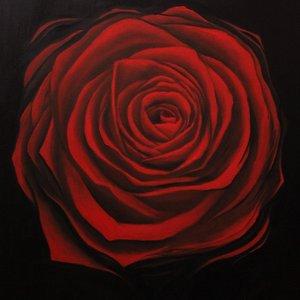 Red_Rose_20492.jpg