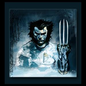 Wolverine_21578.jpg