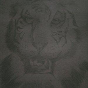 mi_primer_dibujo_con_mi_mano_izquierda_21642.jpg