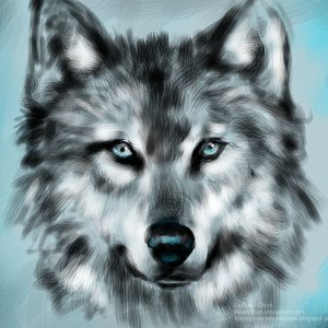 Lobo_Speed_Painting_21846.jpg