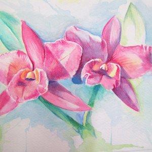 orquideas_22081.JPG