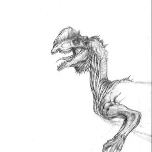 pedazo_de_dilophosaurus_22169.jpg