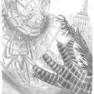 spiderman_22572.jpg
