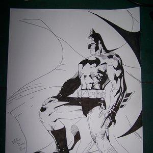 batman_22720.JPG